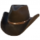 Chapeau DALLAS BLACK