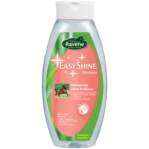 Easy Shine shampoo H742