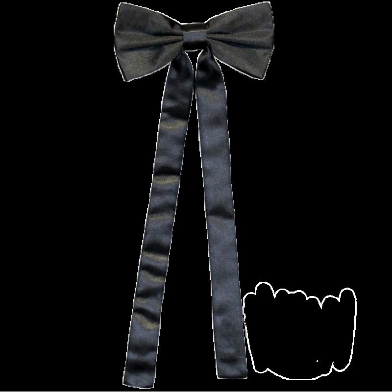 Cravate de colonel T-01