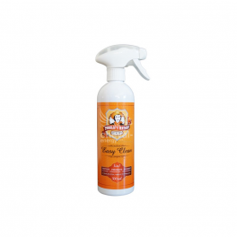 Nettoyant cuir Easy Clean H205