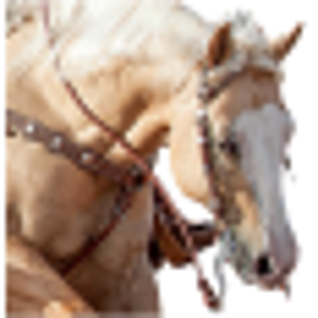 Bridon western Weaver Leather 10-0255