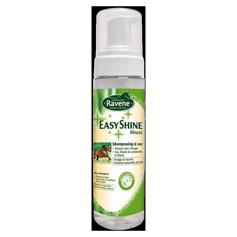 Shampooing sec Easy Shine Mouss H748